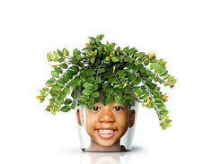 Facepot: Fun and Innovative Flower Pot Displaying Familiar faces