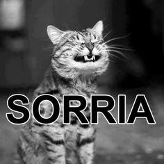 BOM DIA! ☀ #Sorria