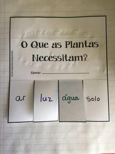 Partes das Plantas - Professores Unidos