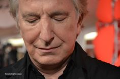 """This photo of Alan Rickman was taken at the 2013 Venice Film Festival, where he was promoting the movie """"A Promise"""". September 4, 2013"""
