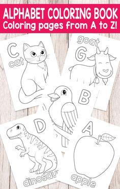 Easy Peasy Alphabet Coloring Book