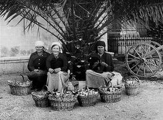 Korcula, Yugoslavia --- Street vendors in Korcola, seated under a palm tree, with baskets of portioned fruits. Croatia, ca. --- Image by ? Street Vendor, Palm Trees, Croatia, Places To Visit, Island, Texture, History, Knitting, Baskets