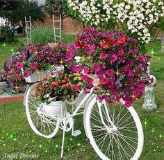 photo bicicleta com flores e borboletas_zpscg058ksk.gif