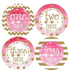 Monthly Baby Milestone Stickers Baby Girl Baby by HauteBelliesShop