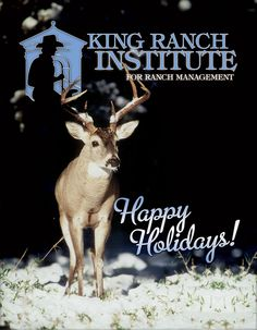 Publications by Ranch House Designs - King Ranch Institute for Ranch Management