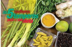 Reeducação alimentar - Temperos - Salsinha, Açafrão da terra; Gengibre; Pimenta; Limão.