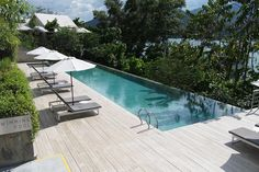 Stunning pool of the Belum Rainforest Resort....another great place to relax after a long day in the Belum jungle.