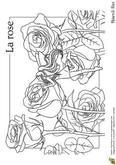 Un dessin à colorier d'une fée qui hume le parfum des roses dans la forêt magique