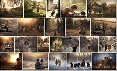 Fotografía para principiantes: Como hacer el Efecto Elena Shumilova con LR.