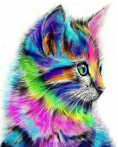 Colorful Rainbow Cat DIY Paint by Number Kit Framed/ Unframed Canvas + Paint + Brush Wall Decor Colorful Animals, Colorful Animal Paintings, Cat Paintings, Cute Animal Drawings, Drawing Animals, Cat Drawing, Drawing Room, Cat Colors, Diamond Art