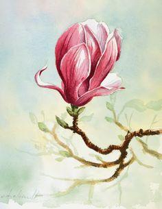Denis Chabault - Les Carnets Aquarelle: Fleur de magnolia