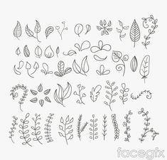 Embroidery Pattern of 45 hand painted leaves design vector from FaceGFX.com. jwt