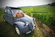 Экскурсионные и винные туры в Бордо - Русский гид в Бордо