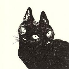two faced cat Pretty Art, Cute Art, Dessin Old School, Arte Sketchbook, Wow Art, Psychedelic Art, Grafik Design, Aesthetic Art, Dark Art