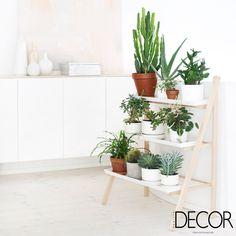 Vasinhos de plantas conferem charme ao ambiente #revistadecor #euleiodecor #details