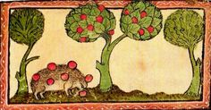 I have been madly in love with the recent offerings of hedgehog marginalia from Medieval Animal Data Network. These adorable looking creatures, are often rendered in the rich golden and red hues of fall, and harvesting grapes (despoiling the vineyards).