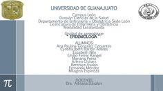 UNIVERSIDAD DE GUANAJUATO Campus León División Ciencias de la Salud Departamento de Enfermería y Obstetricia Sede León Lic...