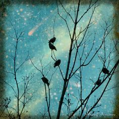 Birds and Stars. Print 8 x 8. Teal blue colors at night sky.
