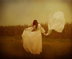 Like the wind   Flickr - Photo Sharing!