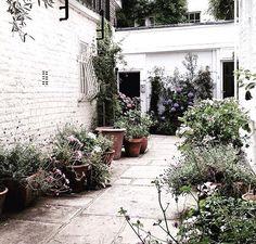 combi steen + (kleur)muur + planten