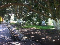 Caminos de piedra de Rio, solo en Careva
