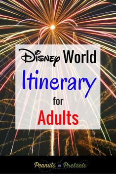 There's a lot to do at Disney World for adults, and you want to get the most for your money, and have the best experience possible.  So it can be overwhelming to even begin thinking about how to sort through all the information, especially at a place like