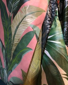 So many jungle prints this year these are featured in the trend directions (at Messe Frankfurt) Palm Leaf Wallpaper, Jungle Print, Commercial Interiors, Trade Show, Plant Leaves, Tropical, Exhibitions, Prints, Inspiration
