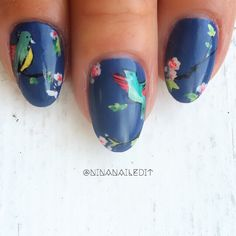 Happy Friday! Here's a closeup of my little birds from last week