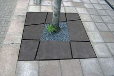 Cast iron tree grate / square MOSA Grijsen park & straatdesign