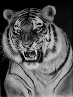 View Tiger by Danguole Serstinskaja. Browse more art for sale at great prices. New art added daily. Buy original art direct from international artists. Shop now