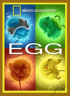 Nat Geo in another universe covers the science behind Poke Eggs
