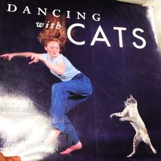 We get the best donations sometimes #library #dancing #dance #cat #cats #kitties #librarian #book #books