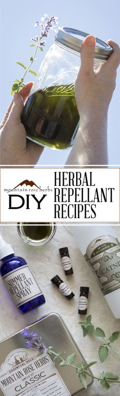 Do you know the SECRET HERBAL INGREDIENT for making natural repellents that actually work?