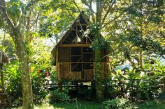 Rustic double cabin in Palenque - Casa Bambutan - Bed & Breakfasts en alquiler en Palenque, Chiapas, México