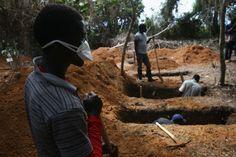 Diretor da OMS admite falta de financiamento para combater epidemia de ebola na África | #Ebola, #Epidemia, #Financiamento, #Medicamento, #Oms