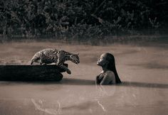 My TOP FAVORITE photographer - simply breathtaking - SERIOUSLY!!! I <3 Gregory Colbert