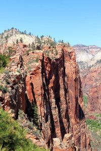 Tips for Hiking in Zion National Park - The Carefree Traveler Zion Utah, Zion Canyon, Zion National Park, National Parks, Zion Hikes, Best Hikes, Natural Wonders, North America, Photo Galleries