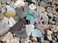 Recent lucky sea glass finds. Favorite Pastime, Beach Stones, Sea Glass, Shells, Jewelry Design, Ocean, Jewels, Plants, Seashells