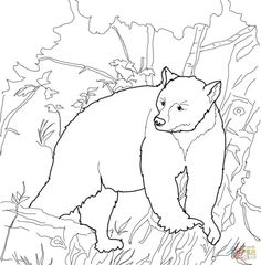 Wonderful Image of Bear Coloring Pages . Bear Coloring Pages American Black Bears Coloring Pages Free Coloring Pages Family Coloring Pages, Blank Coloring Pages, Animal Coloring Pages, Free Printable Coloring Pages, Coloring Sheets, Coloring Books, Colouring, Wood Burning Stencils, Wood Burning Patterns