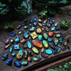 Spectrolite and Labradorite Types of Iridescent Gemstones & Minerals Minerals And Gemstones, Rocks And Minerals, Types Of Gemstones, Crystal Magic, Crystal Healing, Crystal Aesthetic, Mineral Stone, Rocks And Gems, Healing Stones