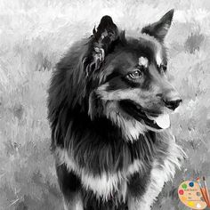 Portraits by NC #German #Shepherd #painting from #photo https://portraits-by-nc.com/blogs/news/a-german-shepherd-portrait-in-black-and-white #blackandwhitephotography #PhotoOfTheDay