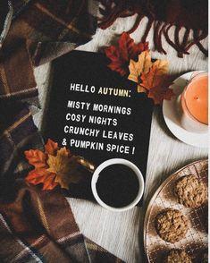 spooky bitch🌙 #harrypotter #halloween #autumn #autumn🍁 #fall #october #ilovehalloween #halloweenseason #witch First Day Of Autumn, Wonderful Day, Autumn Cozy, Autumn Fall, Autumn Feeling, Autumn Coffee, Autumn Harvest, Foggy Morning, Autumn Morning