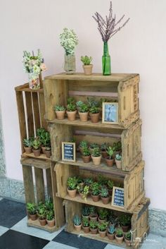 61 Ideas For Wedding Diy Bohemian Party Favors Succulent Party Favors, Succulent Display, Succulent Wedding Favors, Succulent Gifts, Succulent Centerpieces, Succulent Gardening, Cacti And Succulents, Planting Succulents, Wedding Favour Displays