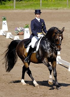 Latvian dressage legend - Airisa Penele and latvian warmblood Ravels. Ravels retired in 2012 when he was 18 years old.
