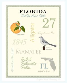 Florida State Pride Series 11x14 Poster by AsYouWishPrinting. $19.50, via Etsy.