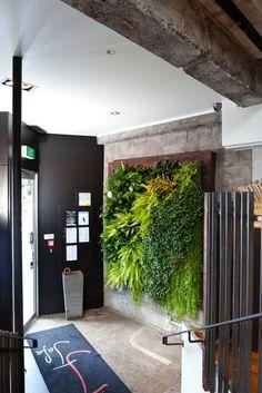 Beautiful living wall.