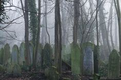 Winter Dawn At Bow Cemetery