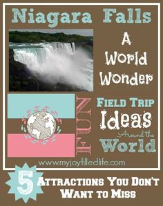 Niagara Falls, USA - 5 Attractions You Don't Want to Miss {Fun Field Trip Ideas Around the World}