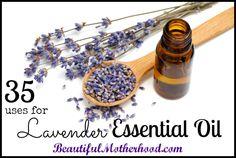 35 Uses For Lavendar Essential Oil :: Beautiful Motherhood