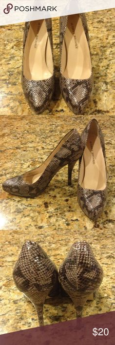 "Audrey Brooke Heels Snake print embossed 4"" heels with hidden half inch platform will take you from work to happy hour! Audrey Brooke Shoes Heels"